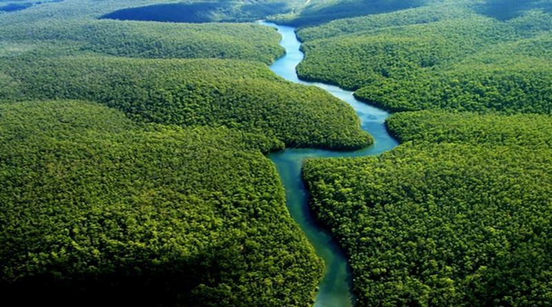 Az élet bölcsője - az Amazonas